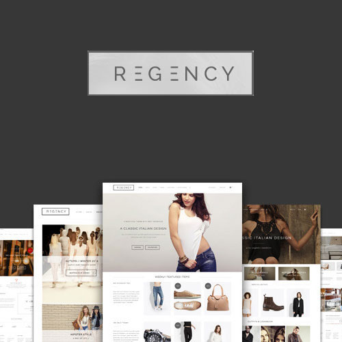 Regency: A Beautiful & Modern Ecommerce Theme